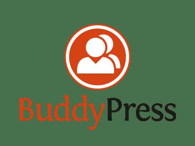 Tech Savvy Systems Buddypress Plugin